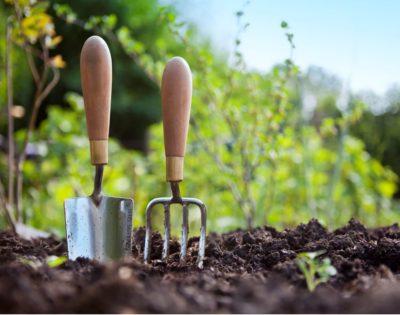 Utiliser l'engrais naturel produit par vos poules